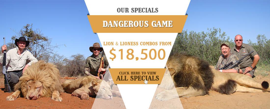 lion-offer
