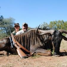 gary-wendy-haas-blue-wildebeest