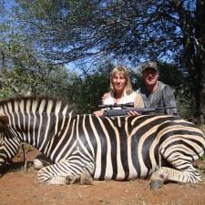 terri-dennis-haas-zebra